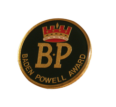 BP Award Lapel Pin