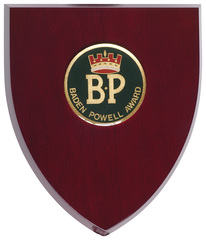 BP Award Plaque