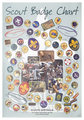Scout Badge Chart