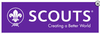 World Scout Car Sticker