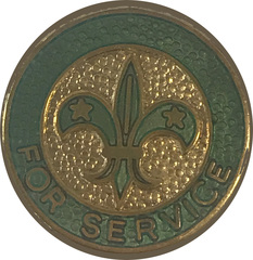 For Service Lapel Pin