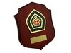 Queen's Scout Award Plaque w/Stand